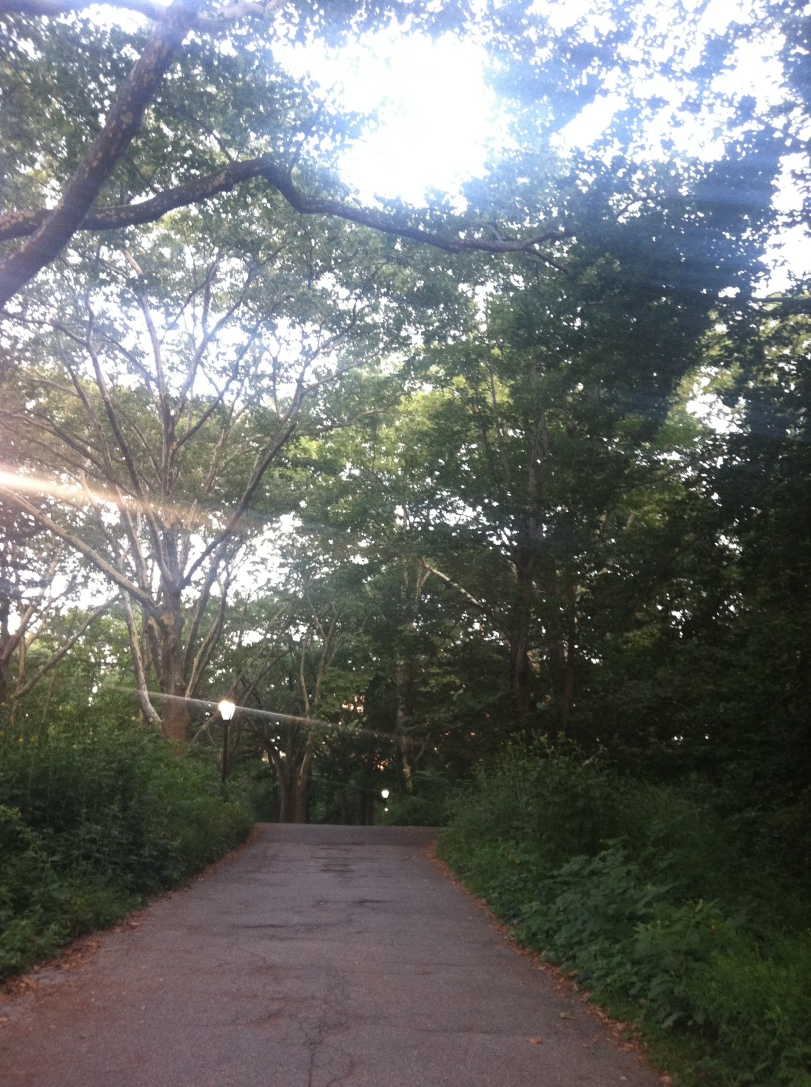 ^^I took this hazy Central Park path photo around 5:50 a.m. as I was entering the park. It reflects my mood nicely. Hazy.