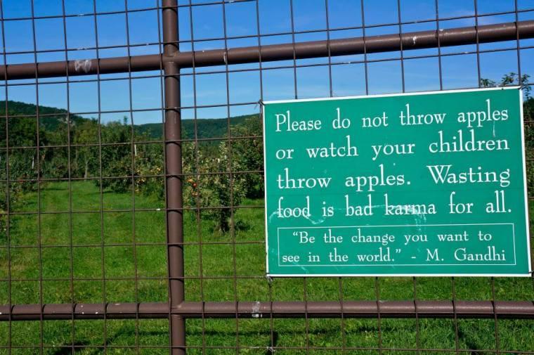 apple_throwing