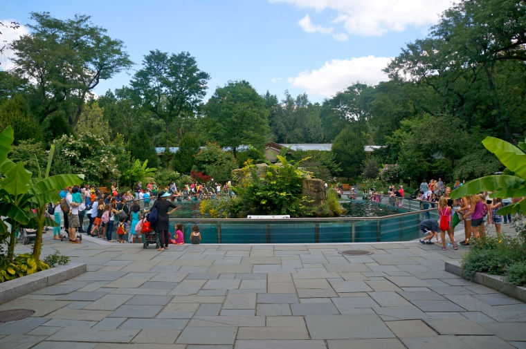 ^^It was a gorgeous day for the zoo!