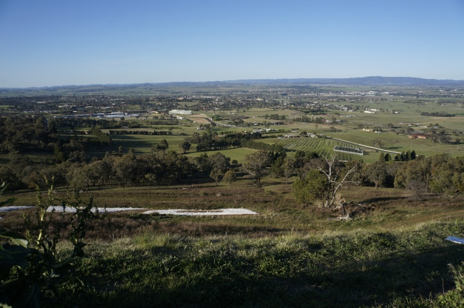^^ The view around Mt. Panorama in the daytime.