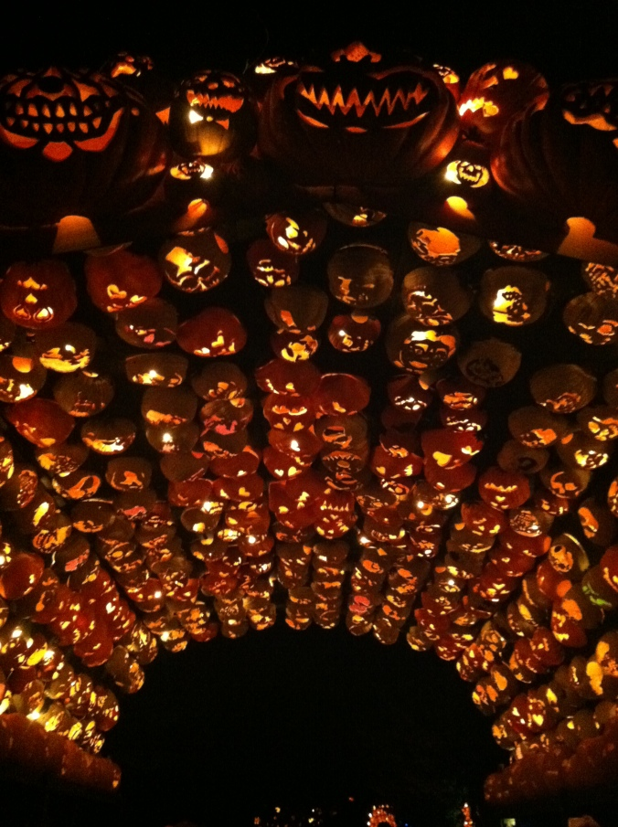 ^^The great wall of pumpkins