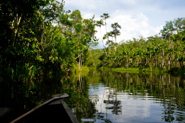 The Ecuadorian Amazon