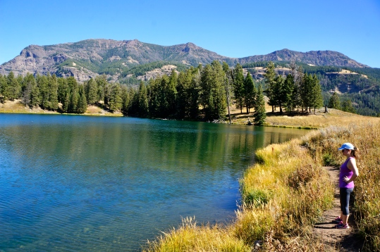 Trout Lake, Yellowstone National Park