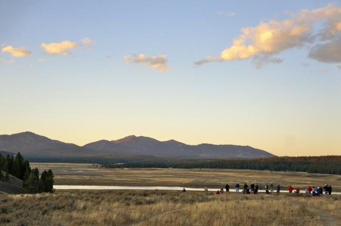 14_Yellowstone