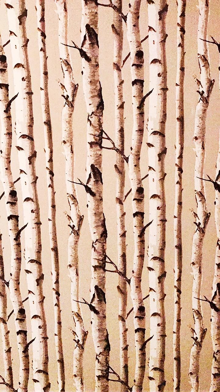 18BasementBathroomWallpaper